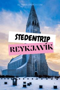 STEDENRIP REYKJAVIK PIN