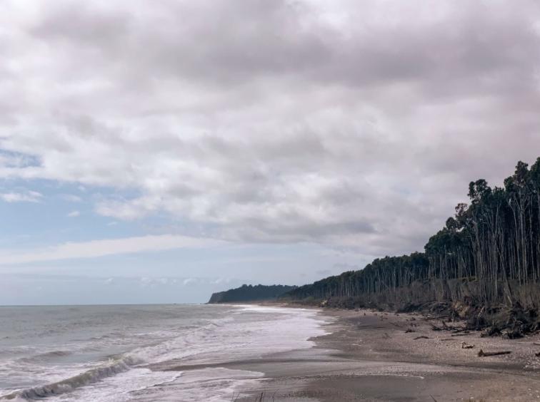 nieuw zeeland strand